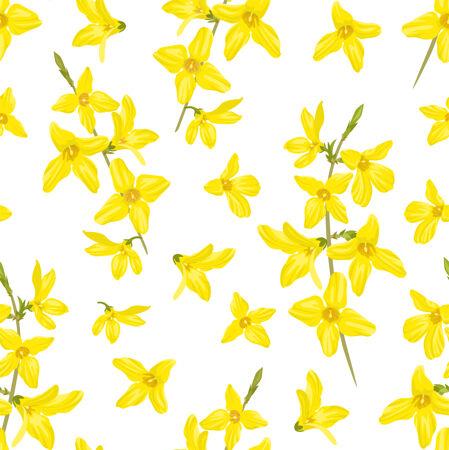 黄色春花连翘无缝图案