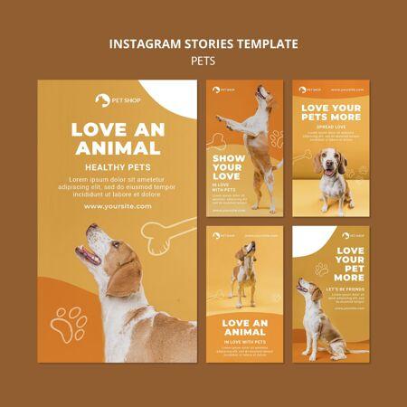 宠物店instagram故事模板