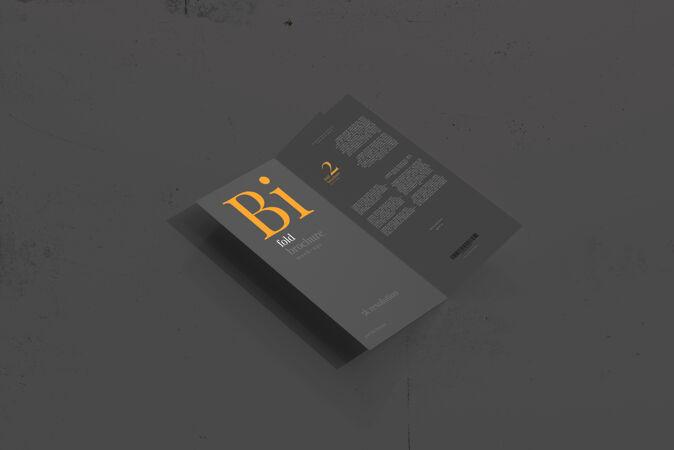 Dl大小的双折小册子模型