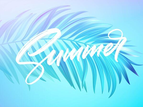 夏季字母设计在一个彩色的蓝色和紫色棕榈树叶的背景