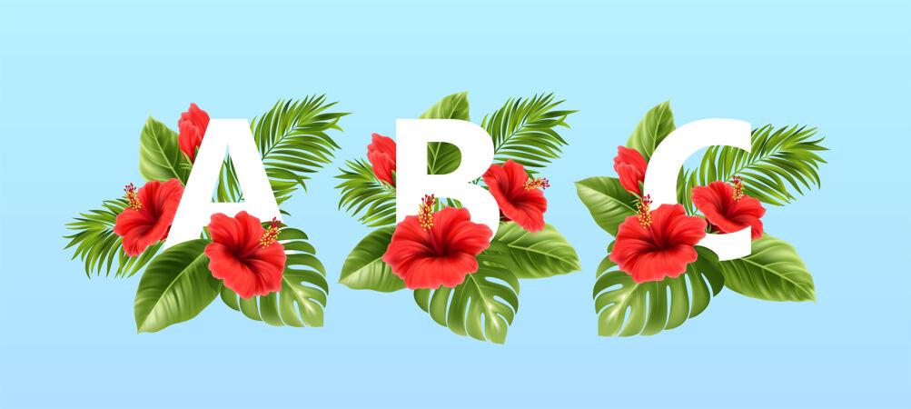 被夏天的热带树叶和红色的芙蓉花包围的字母